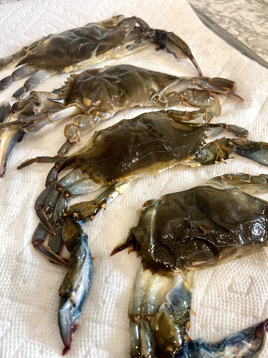 picture of soft shell crabs